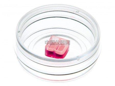 ibidi易必迪µ-Dish 35 mm//低壁,预置伤口愈
